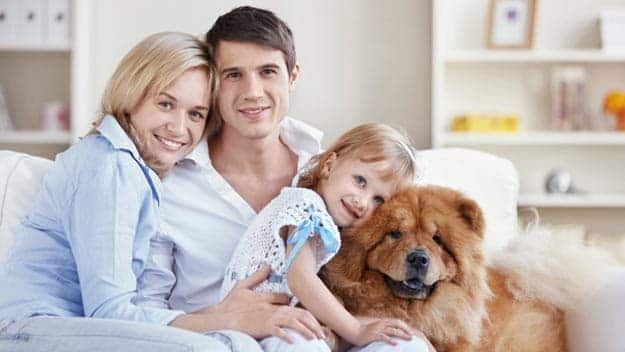 Wills & Trusts dog-young-family Direct Wills Henley-on-Thames